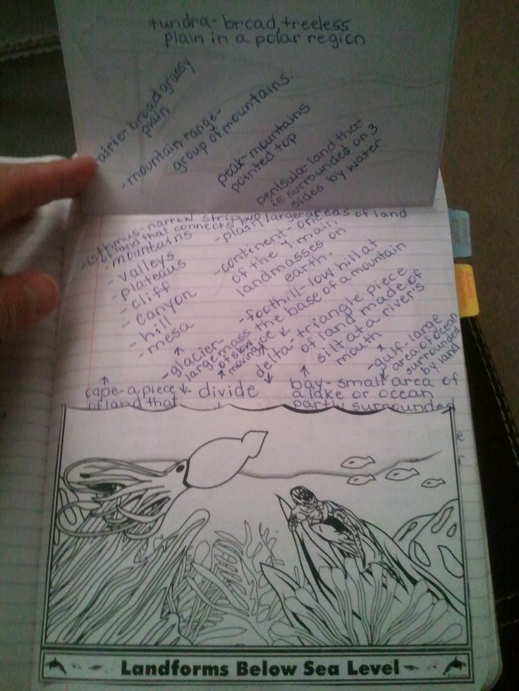 The Middle School Mouth: More on My Social Studies Interactive Notebook