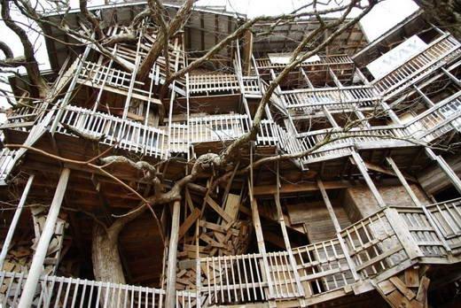 """Unik Dan Aneh """"Rumah Pohon Terbesar Di Dunia"""" - Karya Unik"""