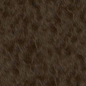 Textures Texture seamless | Faux fake fur animal texture seamless 09572 | Textures - MATERIALS - FUR ANIMAL | Sketchuptexture