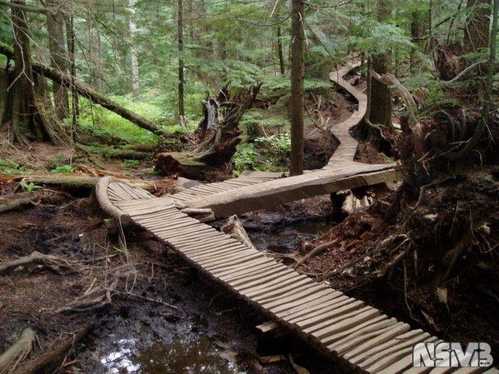 moutain bike trail plan   Mountain Biking at Mount Seymour   Raif Weston