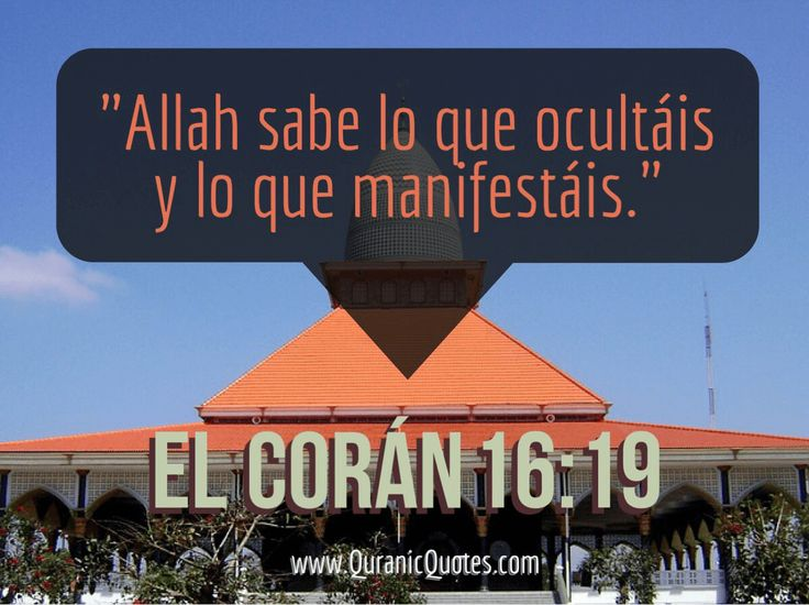 #66 El Corán 16:19 (Surah an-Nahl) And Allah knows what you conceal, and what you reveal. Alá sabe lo que ocultáis y lo que manifestáis.