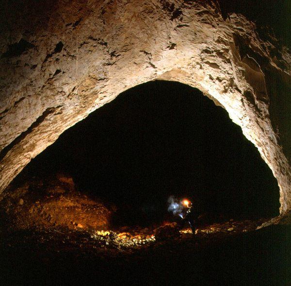 Pestera Meziad,,ste una din cele mai interesante peşteri amenajate în scop turistic din carstul Munţilor Apuseni..