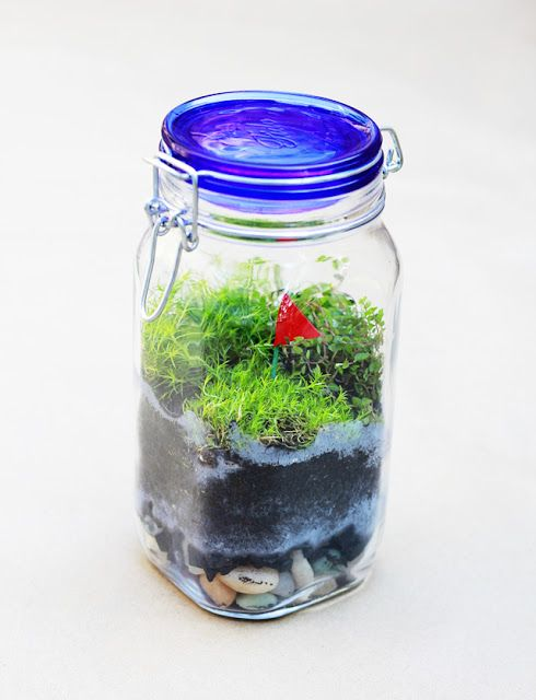 Calico skies: Terrarium DIY: Terrariums, Diy'S, Kids Stuff, Terrarium Diy, Fun Ideas, Crafty Projects, Mason Jars, Calico Sky, Calico Skies