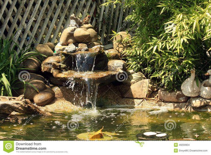 Stagno Giapponese Del Giardino Con La Cascata Ed I Pesci ...