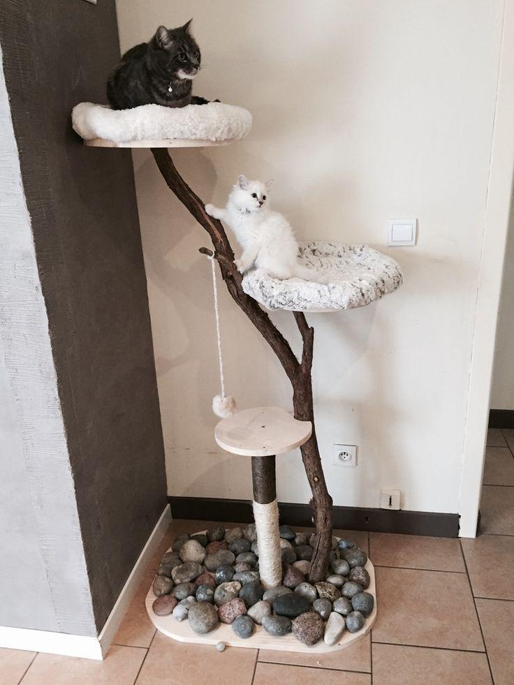 17 meilleures id es propos de maison pour chat sur pinterest lits pour chat maisons de chat. Black Bedroom Furniture Sets. Home Design Ideas