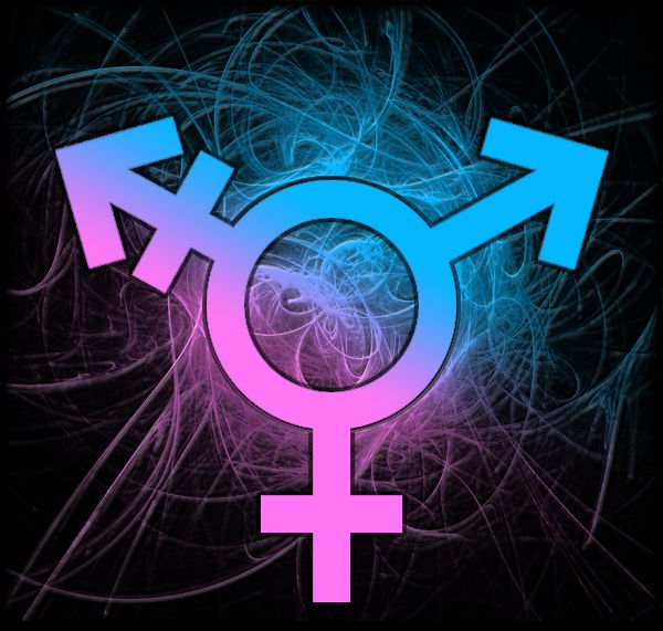 90 Best Transgender Pride Images On Pinterest