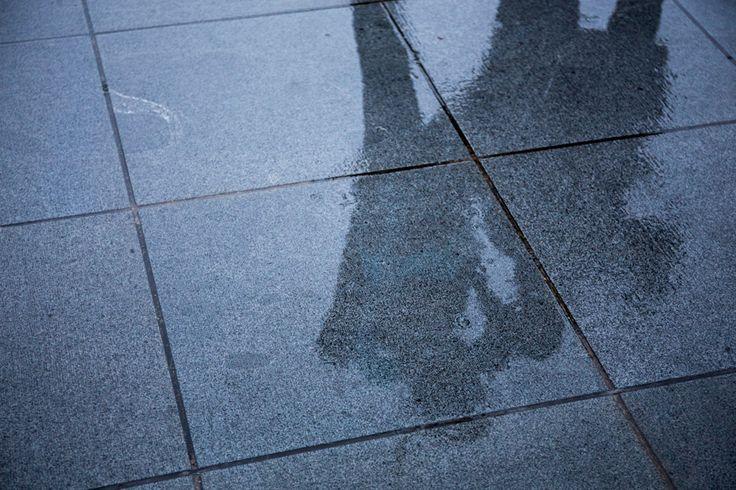 撮影テクニック:雨の日だから撮れる写真
