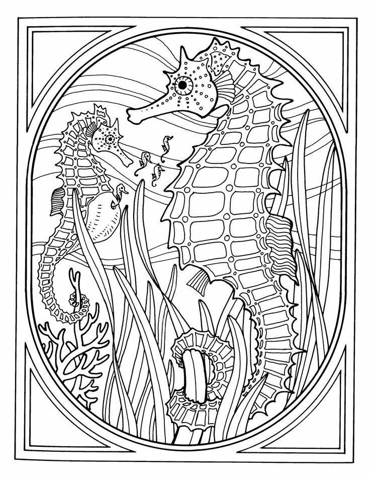 Best Photos Of Sea Life Coloring Pages Ocean Printable For Adults Exquisite