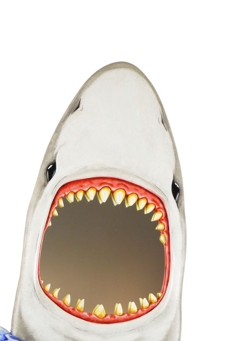 #SharkAttack Mirror :)>