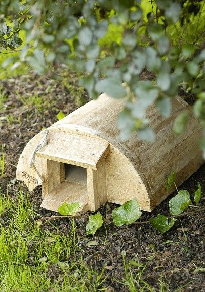 Hedgehog House…because u never know when u might need to build one!