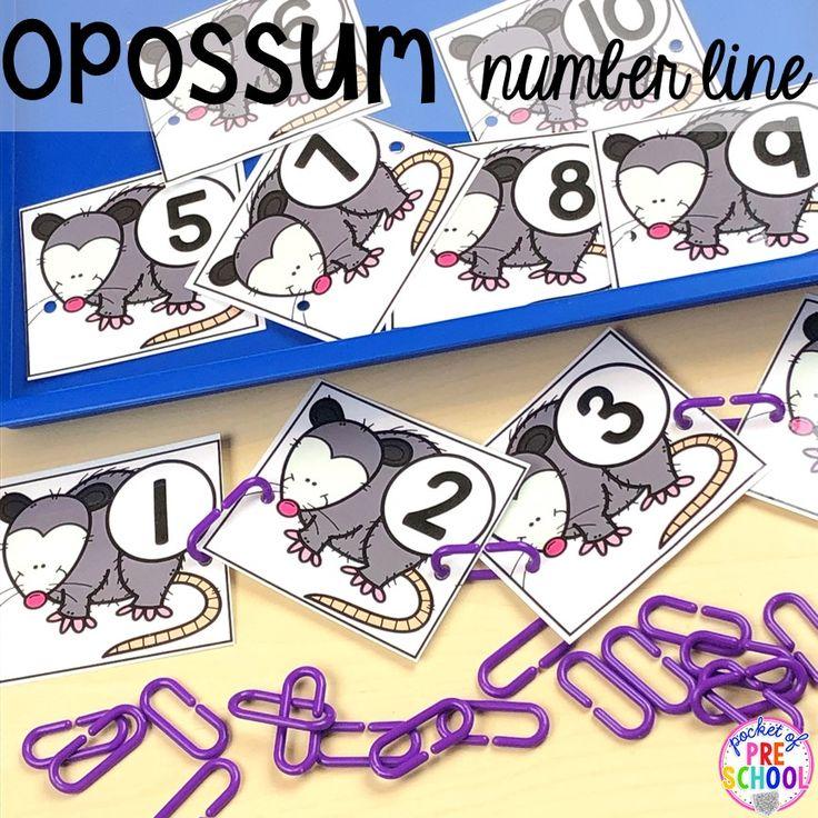 Nocturnal Animals List Preschool