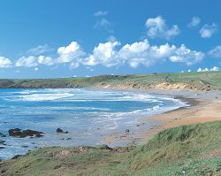 Freshwater West beach - Shell Cottage -  Bill & Fleur's home - Pembrokeshire,Wales