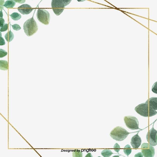 Bordure De Feuille D Eucalyptus Simple Vert Clipart Bordure De Fleurs Frontiere Feuille Fichier Png Et Psd Pour Le Telechargement Libre Flower Border Clipart Leaf Border Flower Border