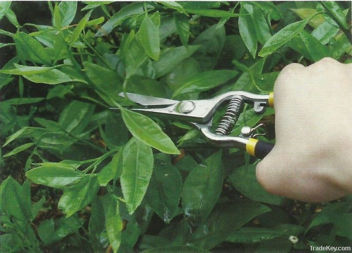 Floral pruning and shearing tool