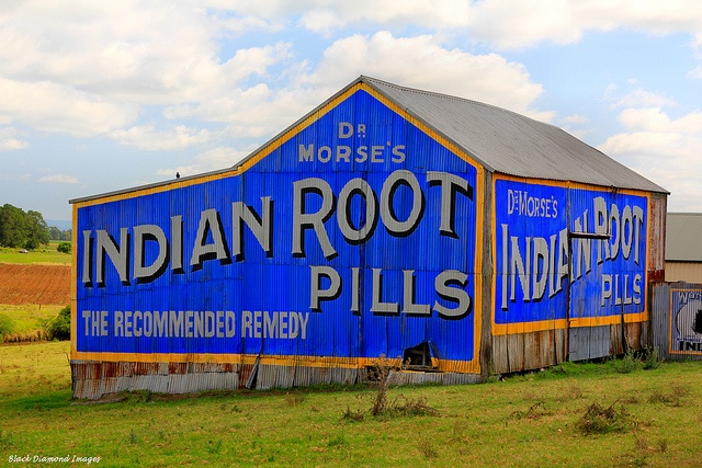 Dr Morse's Indian Root Pills Sign - Raworth, Morpeth Road, NSW. Drove passed this many times going to picnics. My mother loved going up to Morpeth