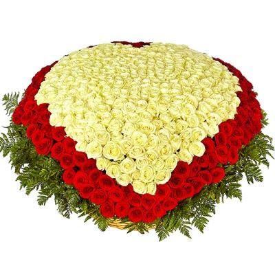 Сердце из 501 розы с бесплатной доставкой в Москве http://www.dostavka-tsvetov.com/osobye-bukety/rozi-monika