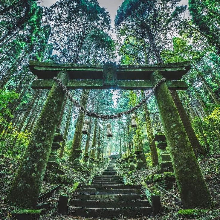 | Japan never considers time together as time wasted. Rather it is time invested.  Donald Richie | @takaphilography  | #Kumamoto #Japan   win 2 roundtrip tickets to anywhere Delta flies.  Click the link in our bio or tag pics #tripmasterstravel to enter ................................................................. #vacations #wanderlust #instatravel #travelgram #tourism #passportready #liveauthentic #exklusive_shot #modernoutdoorsman #getoutstayout#neverstopexploring #ourcamplife…