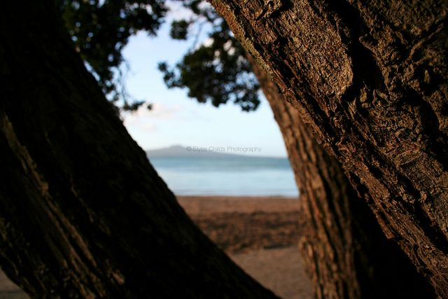 Rangitoto Island from Mission Bay, Auckland | © Elyse Childs Photography