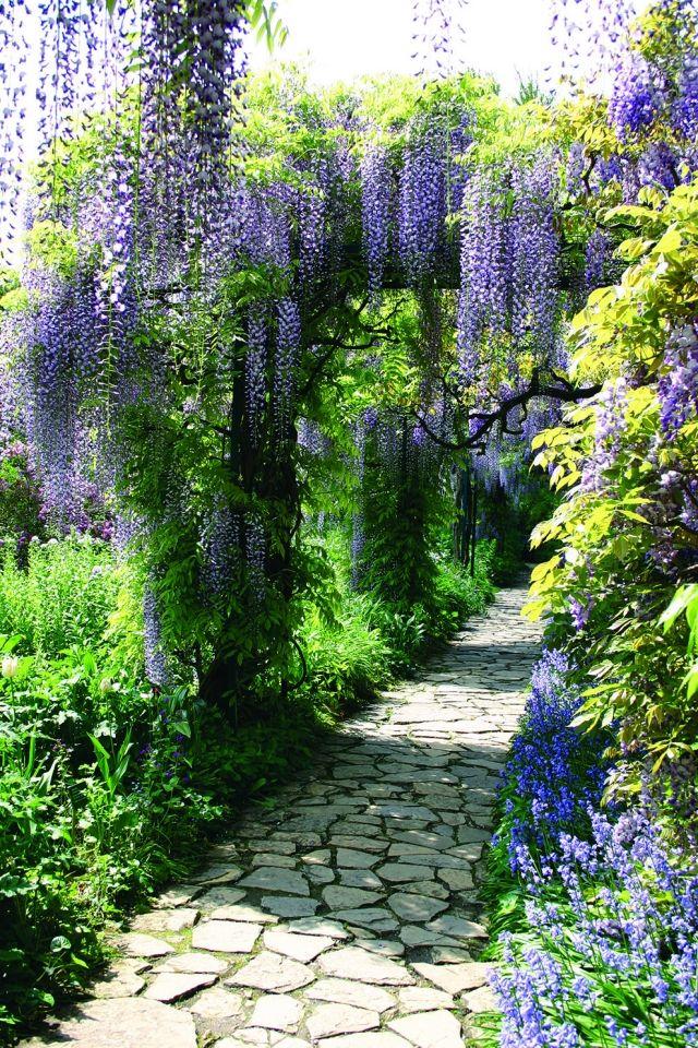 Schon ... Ideen Hof Garten Gestalten Blauregen Steinweg Romantisch Floral   Romantische  Garten Gestalten ...