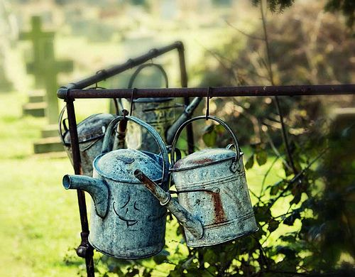 *Riches to Rags* by Dori: Backyard and Garden Decorating