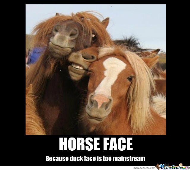 51 best images about horse jokes on Pinterest | Horse meme ...