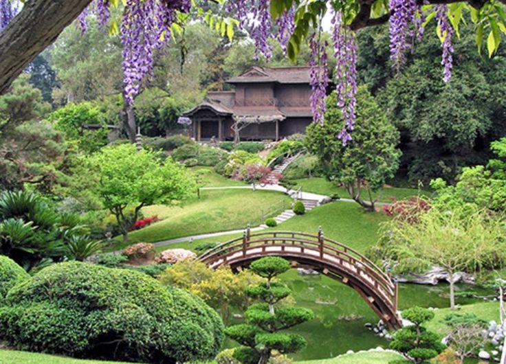 Southwest Botanical Garden, Okinawa, Japan! #vacation #beautiful places #dream