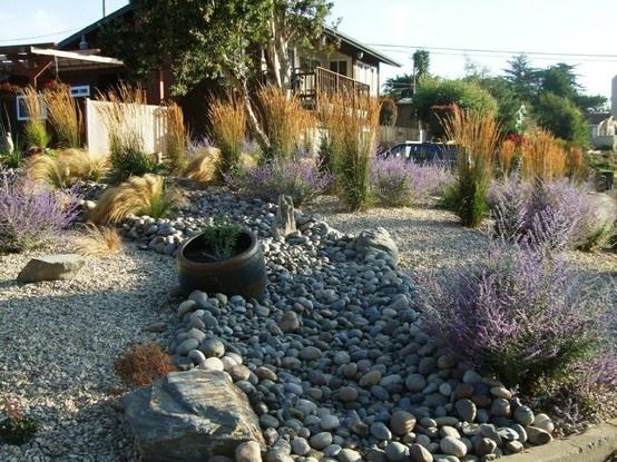 Good 431 Best Drought Tolerant Gardens Images On Pinterest | Garden Layouts,  Landscaping And Succulents Garden