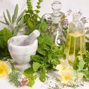Pampeliškové recepty -      Smetánka lékařská (Taraxacum officinale) je typickou jarní bylinkou. Její krásné žluté květy tvoří koberce až do kilometrových vzdáleností. Dříve jí lidé nazývali elixírem života. Je totiž