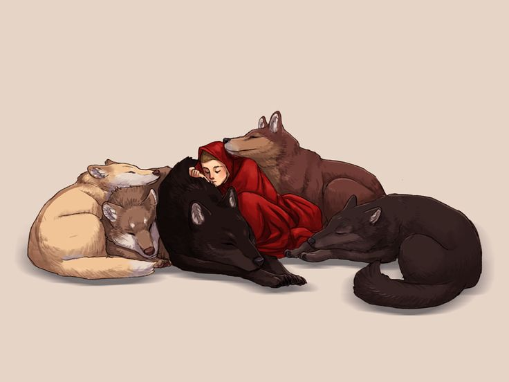 A 9x12 matte print of Stiles and the Wolf Pack, sleeping.