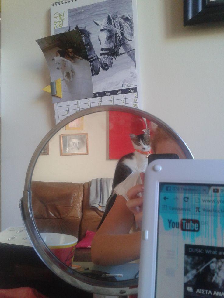 Tasia watching YouTube!