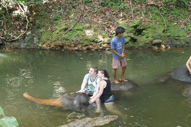 Badning med elefanter på Koh Chang
