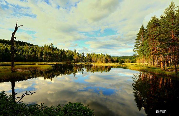 Bakkefløyta in Nord Odal, Hedmark, Norway