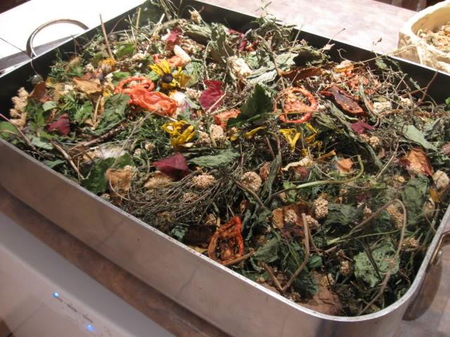 homemade mixes for degus to munch