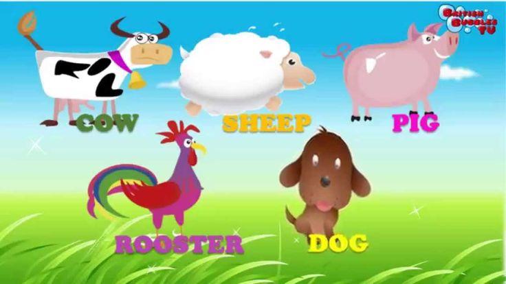 Video de animales granja, en los que se cita el nombre y el sonido que hace cada uno