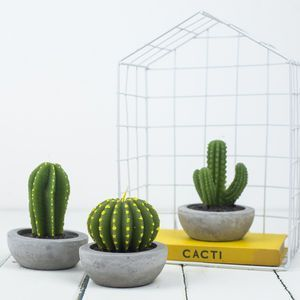 Cactus Candle | Pinterest | Cacti and Cactus decor