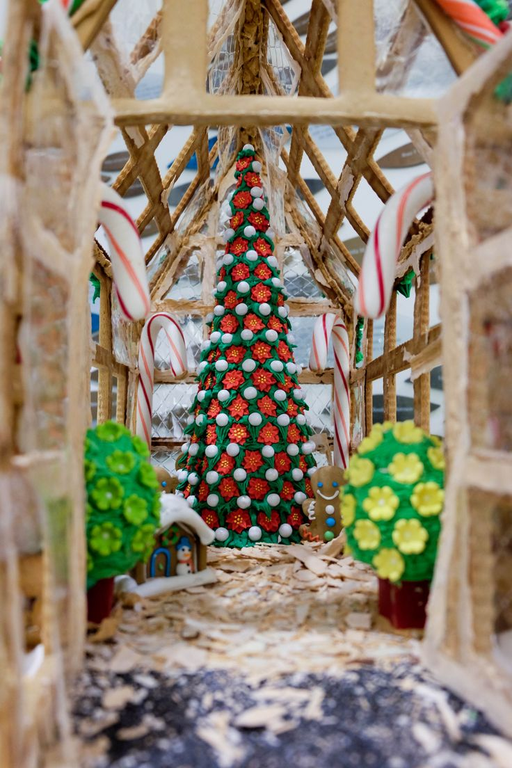 Glow is Cleveland Botanical Gardens Christmas spectacular with beautiful light displays and Christmas tree decorated throughout.