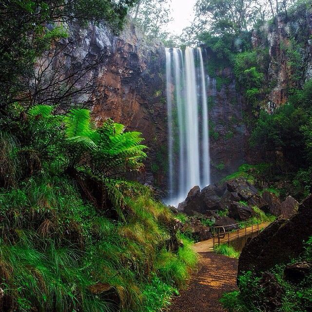 Queen Mary Falls in Main Range National Park captured by @mcguigan_visuals in @sqcountry #thisisqueensland #sqcountry #qldparks