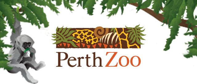 Perth Zoo Just minutes from the heart of the city, Perth Zoo has so much to do! Highly recommended!!