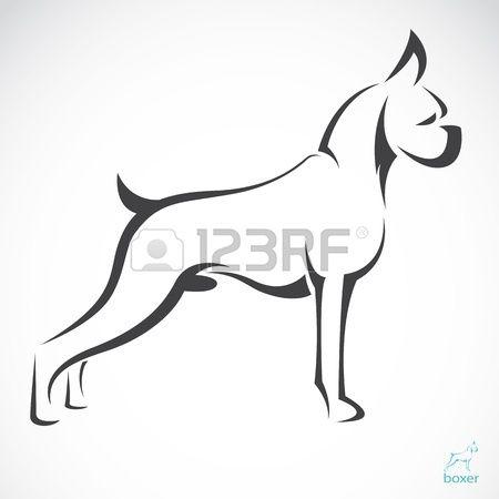 Vecteur d image d un boxeur de chien sur fond blanc Banque d'images