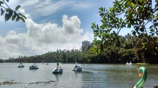 Bela paisagens domingo meio dia no Parque de Pituaçu Salvador Bahia