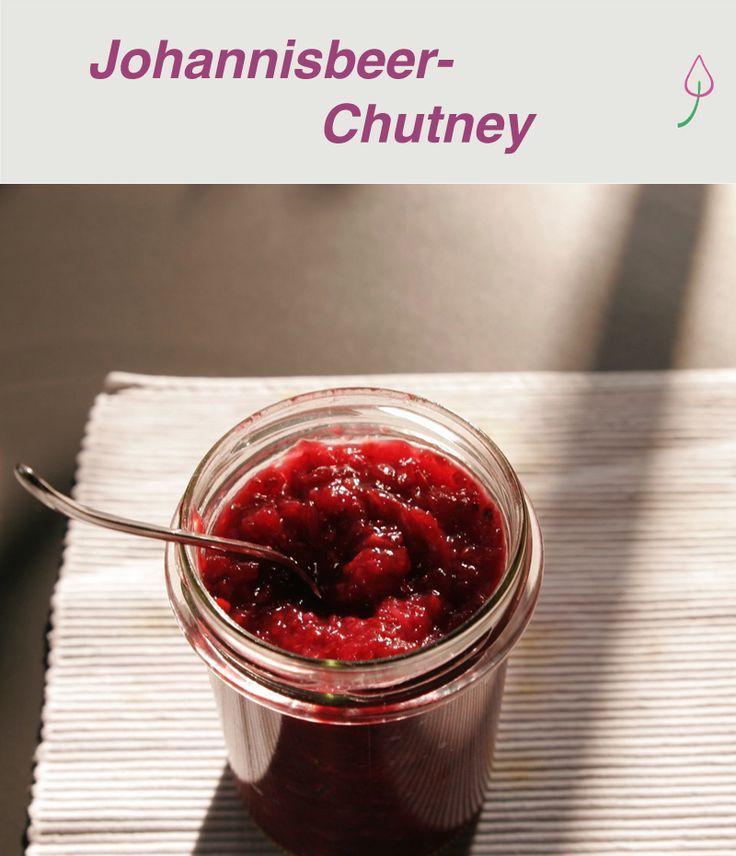 Rezept für ein Chutney mit Johannisbeeren – ideal zum Grillen