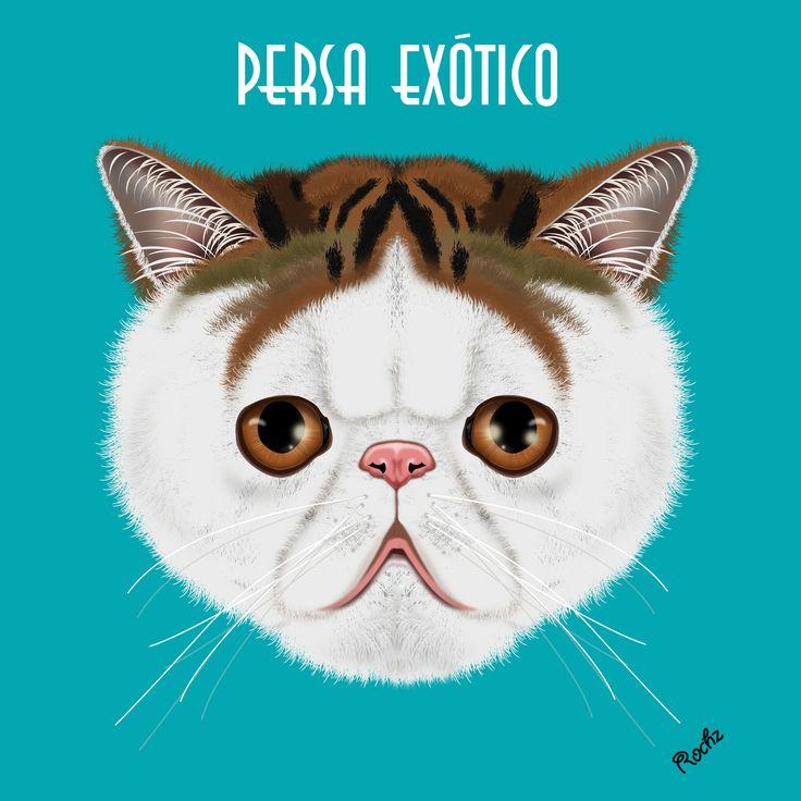 Raza de Gato Persa Exótico Digital Painting