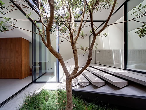 raw concrete steps connect the interior and exterior: Architects, Stairs, Living Spaces, Interiors Design, Victorian Terraces, Skylight Houses, Sydney Australia, Houses Design, Courtyards