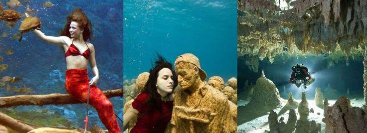 [FOTO] Pemandangan bawah air paling menawan di dunia http://on-msn.com/1tvz6yk