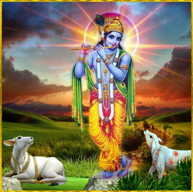"""✨ SHRI KRISHNA GOVINDA ॐ ✨ http://careforcows.org/ """"Actual speech is that which describes the qualities of the Lord, real hands are those that work for Him, a true mind is that which always remembers Him dwelling within everything moving and..."""