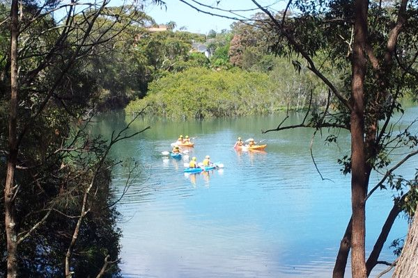 Paddling on Coffs Creek at Coffs Harbour, New South Wales, Australia (@coffscoast / twitpic)