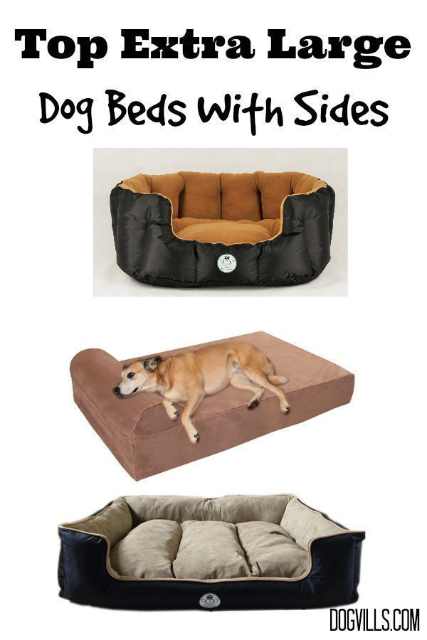 Looking for comfy places to sleep for your big pooch? Check out these top extra large dog beds with sides!
