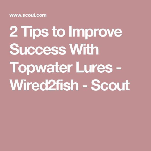 2 Tips to Improve Success With Topwater Lures - Wired2fish - Scout