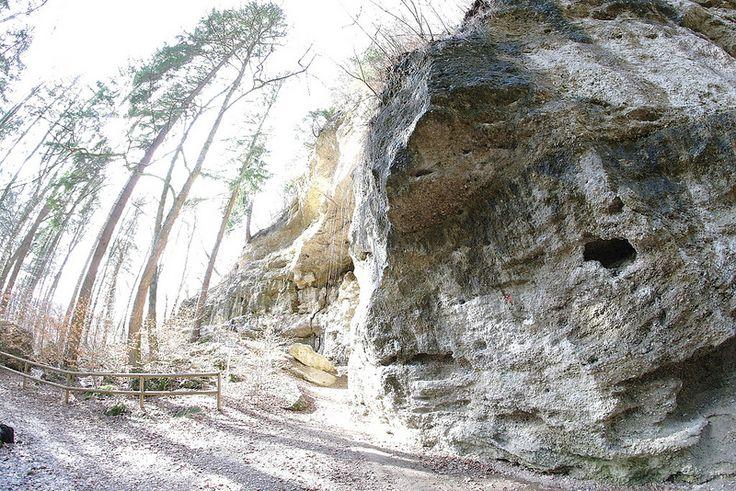 Klettergarten #München eins der schönsten Geotope in #Bayern mit Felsen aus superpolierten Nagelfluh ... perfekt zum #Bouldern