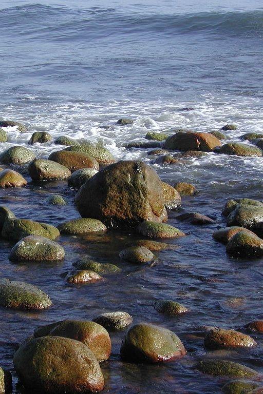 Playa del Litoral   Coastal Beaches